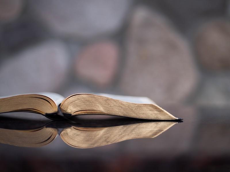 OS DECEPCIONADOS COM DEUS, E O SEU JESUS DE PELÚCIA  - Luterana Renovada